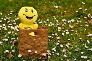 Smiley auf Blumenwiese